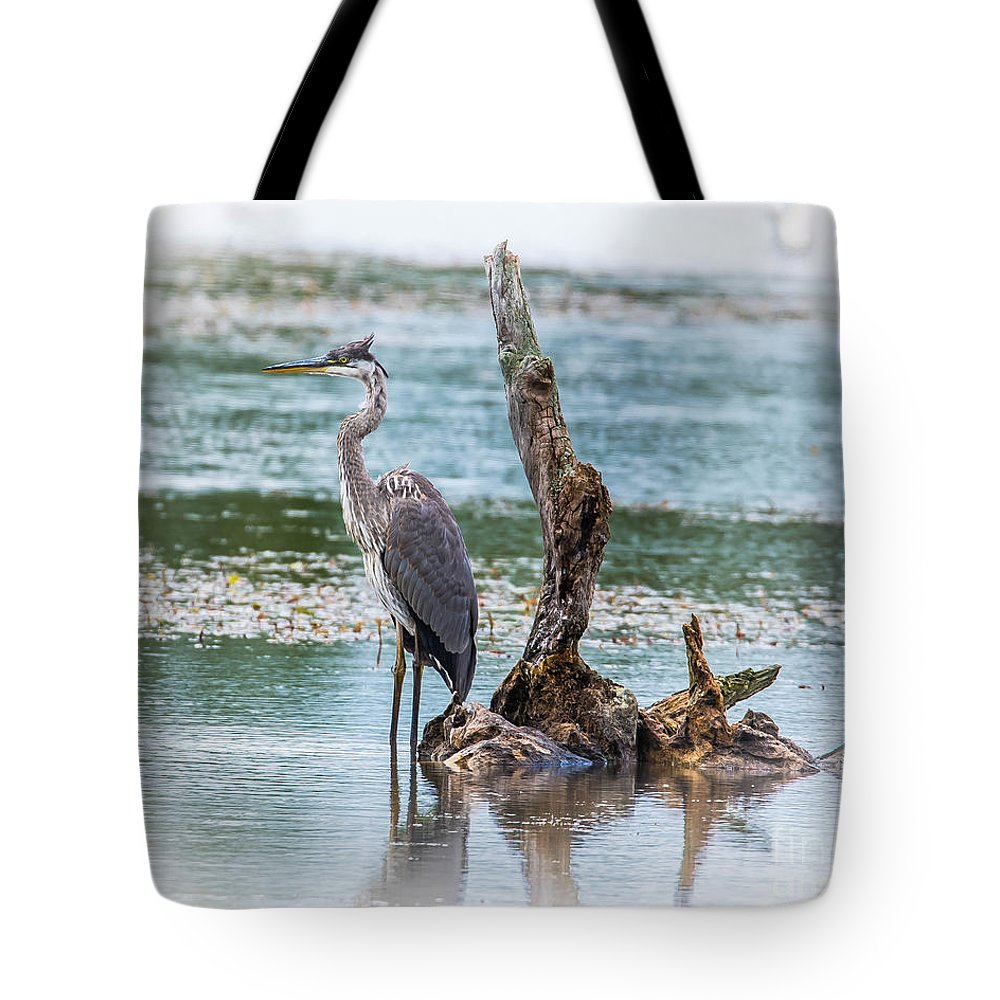 Bird Tote Bag featuring the photograph Great Blue Heron by Ronald Grogan