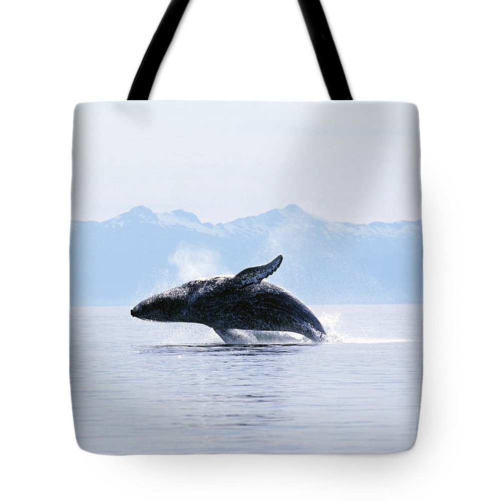 Active Tote Bag featuring the photograph Humpback Whale Breaching by John Hyde - Printscapes