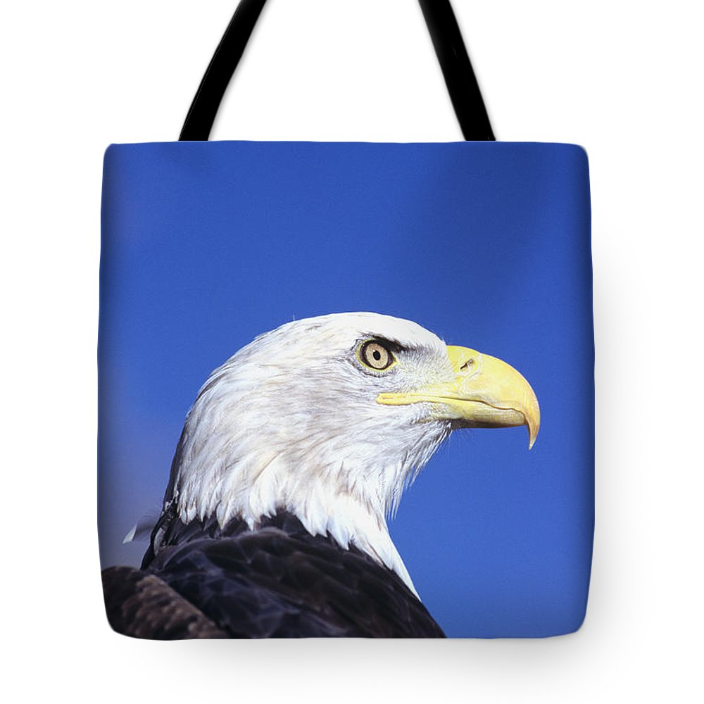 Alaska Tote Bag featuring the photograph Bald Eagle by John Hyde - Printscapes