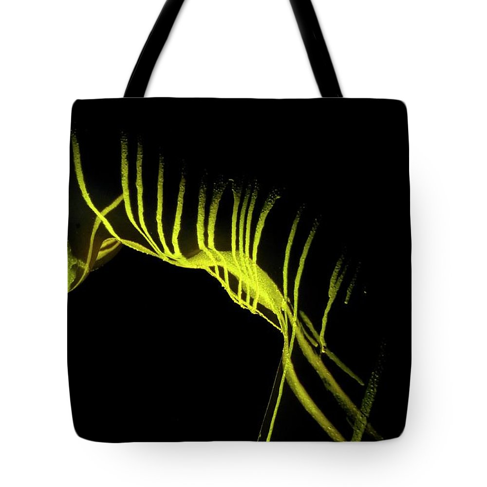 Nude Tote Bag featuring the photograph Liquid Latex by Pavel Jelinek