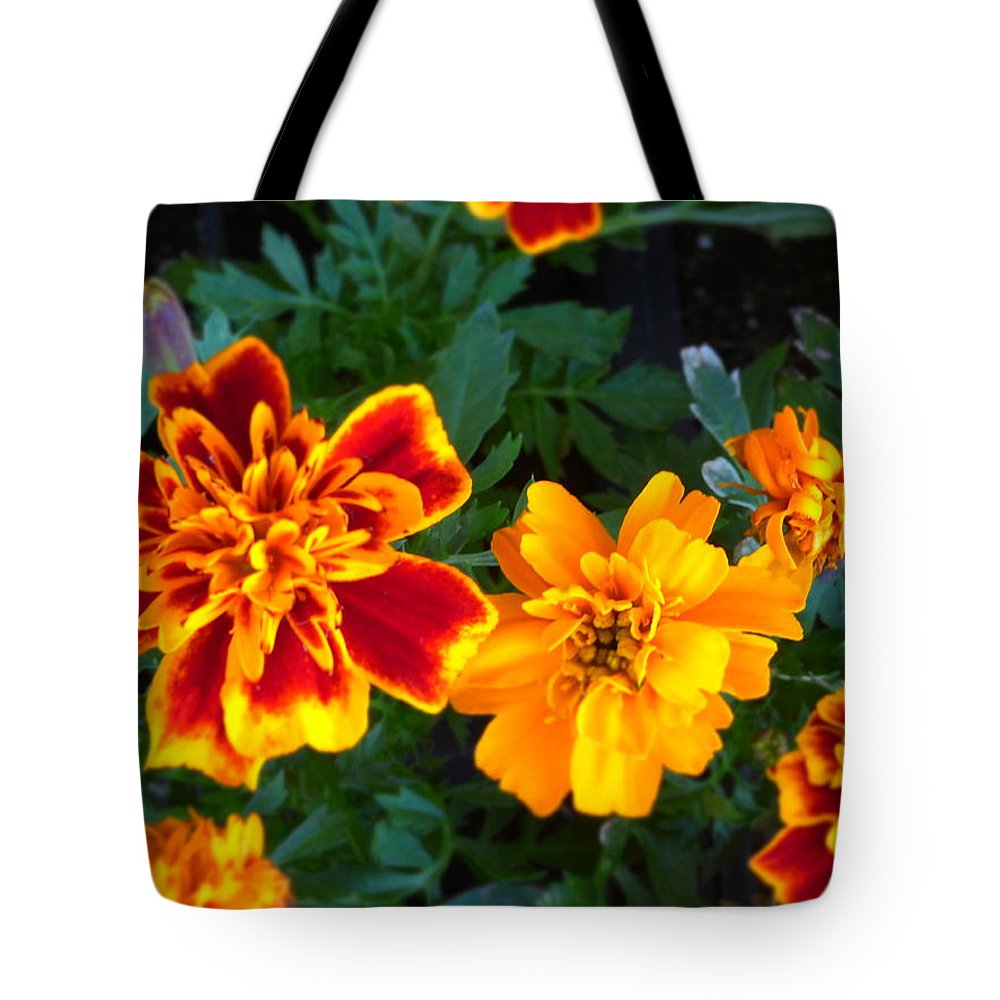 Paul Stanner Tote Bag featuring the photograph Squeeze Me by Paul Stanner