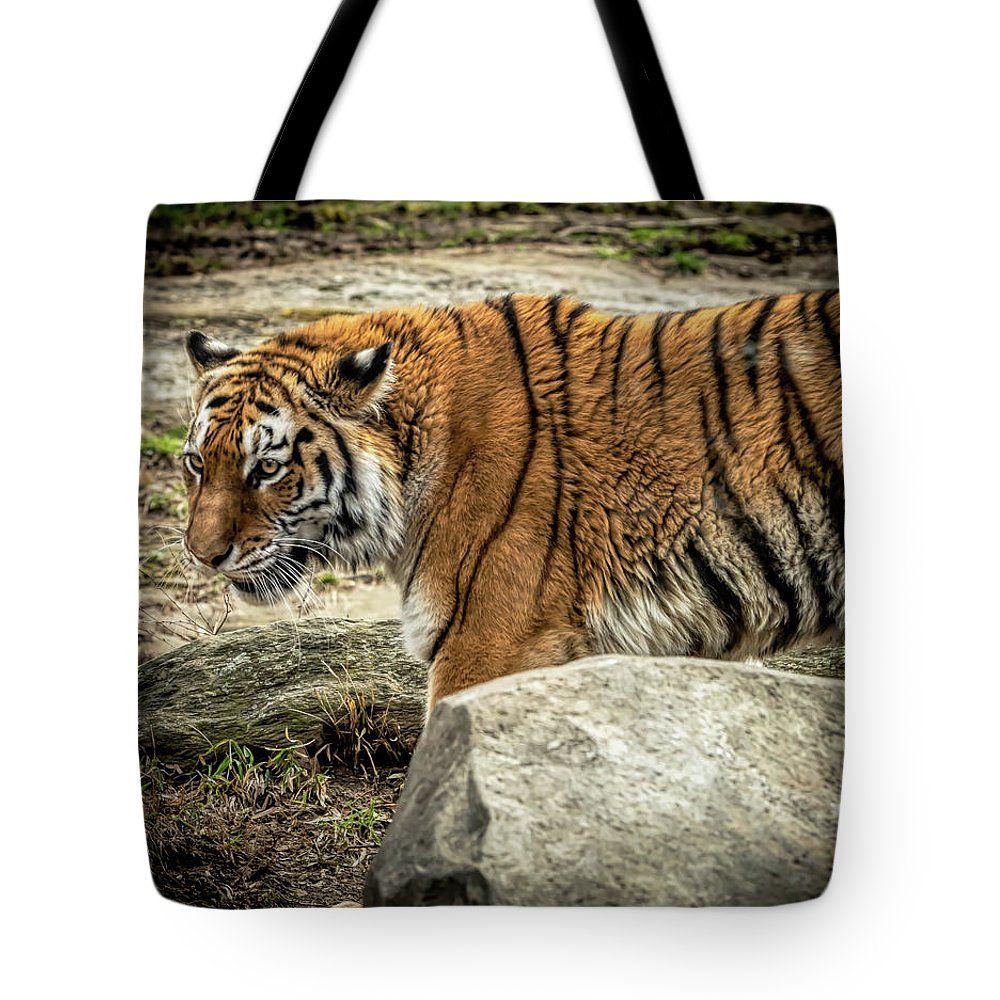 Tiger Tote Bag featuring the photograph Tiger by David Pine
