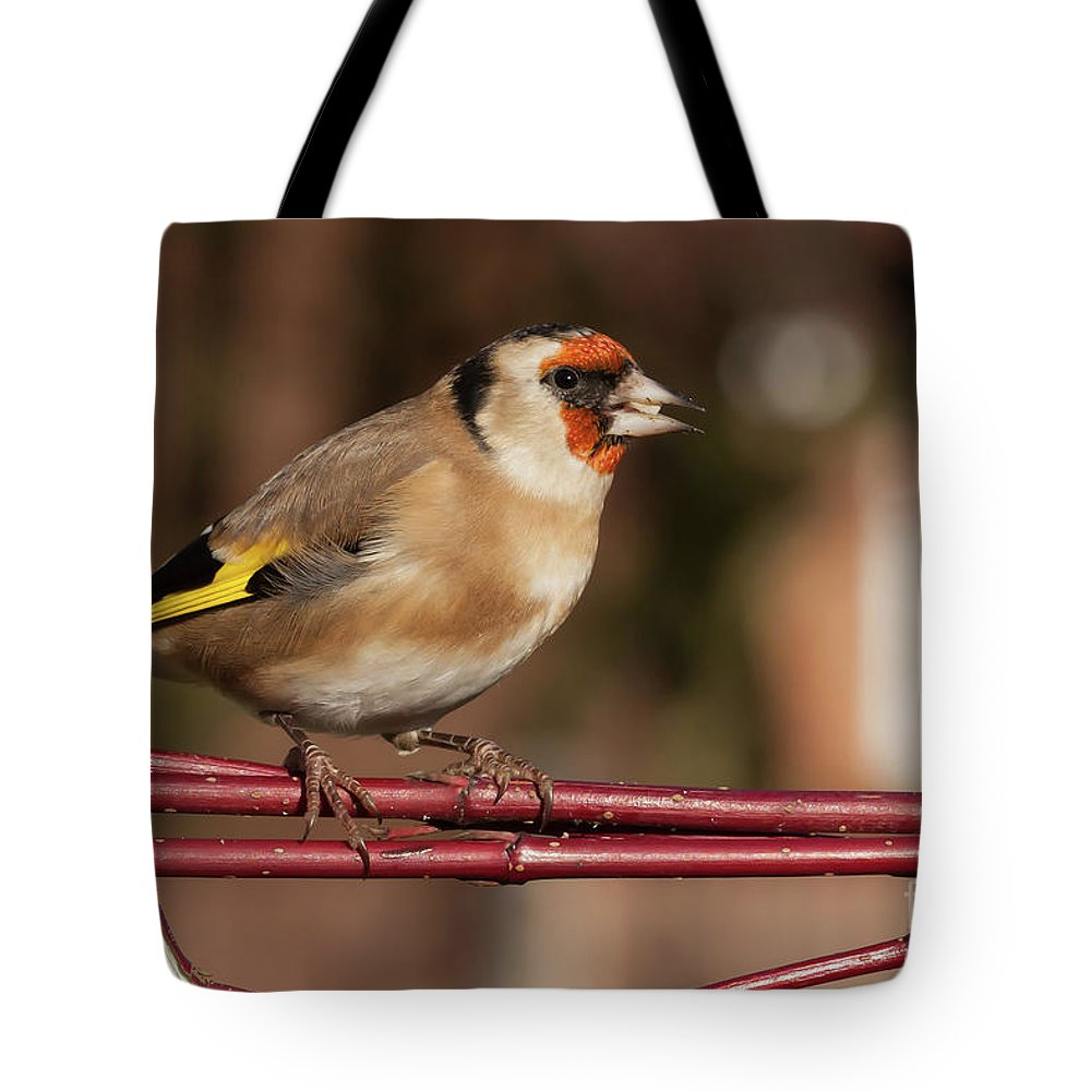 Goldfinch Tote Bag featuring the photograph European Goldfinch Bird Close Up  by Simon Bratt Photography LRPS