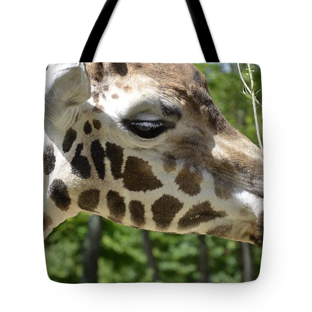Mammal Tote Bag featuring the photograph Giraffe by FL collection