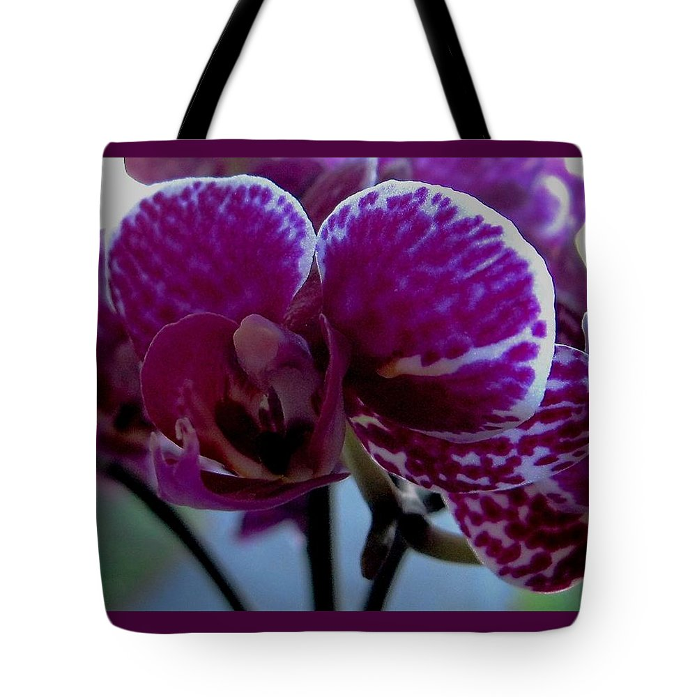 Orchid Tote Bag featuring the photograph A Beautiful Flower by Sandra Maddox