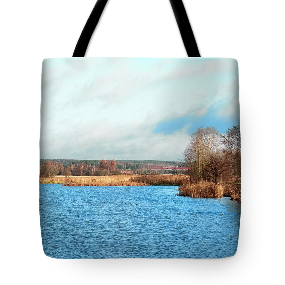 Bay Tote Bag featuring the photograph A Bed Of Reeds by Esko Lindell