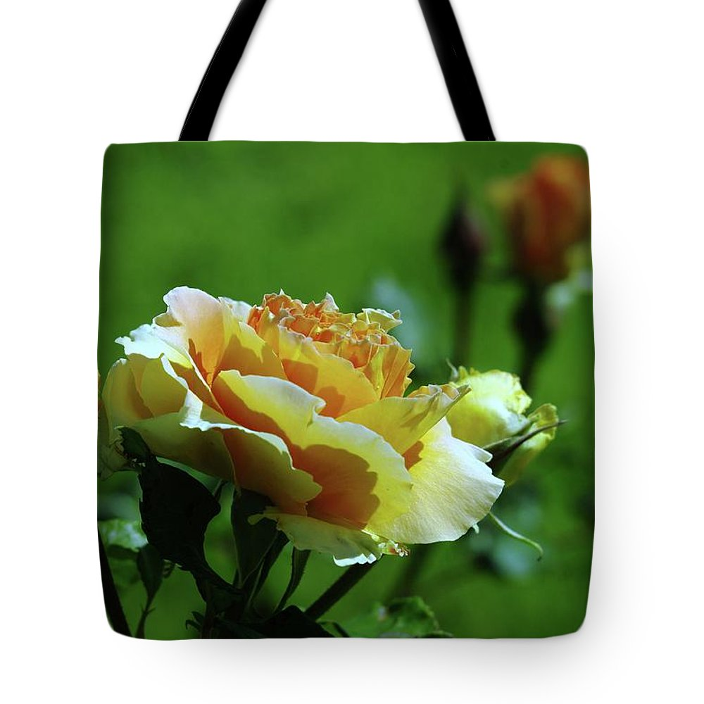 Roses Tote Bag featuring the photograph A Benton City Rose by Jeff Swan