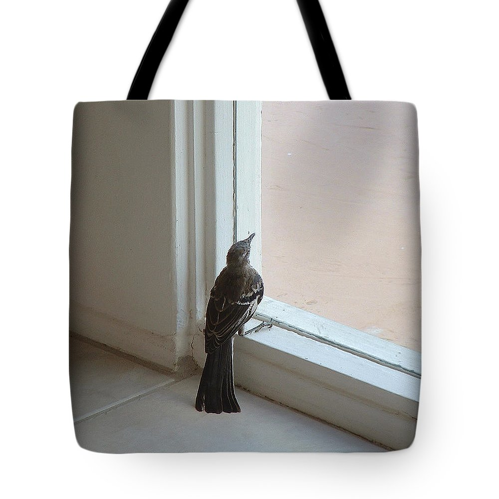 Fenestration Tote Bag featuring the photograph A Bird At A Plate Glass Window by Stan Magnan