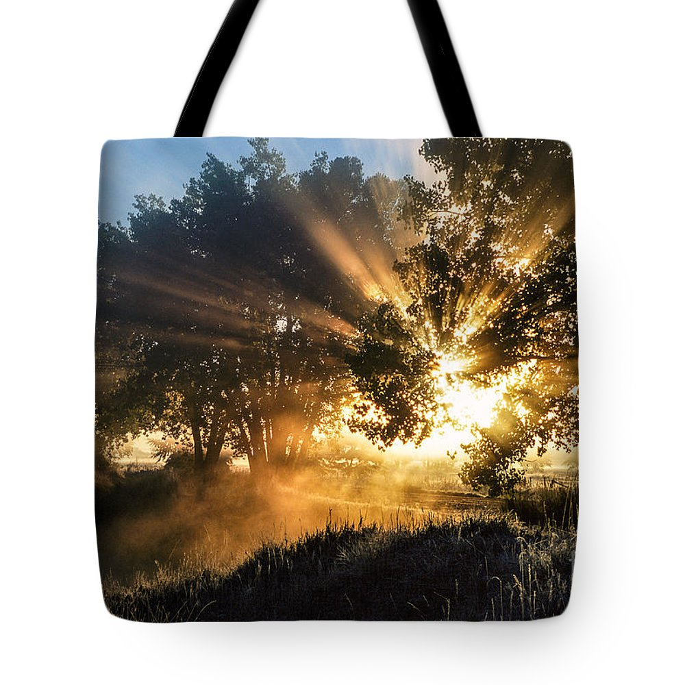 Beautiful Tote Bag featuring the photograph A Blast Of Sunrise by Greg Summers