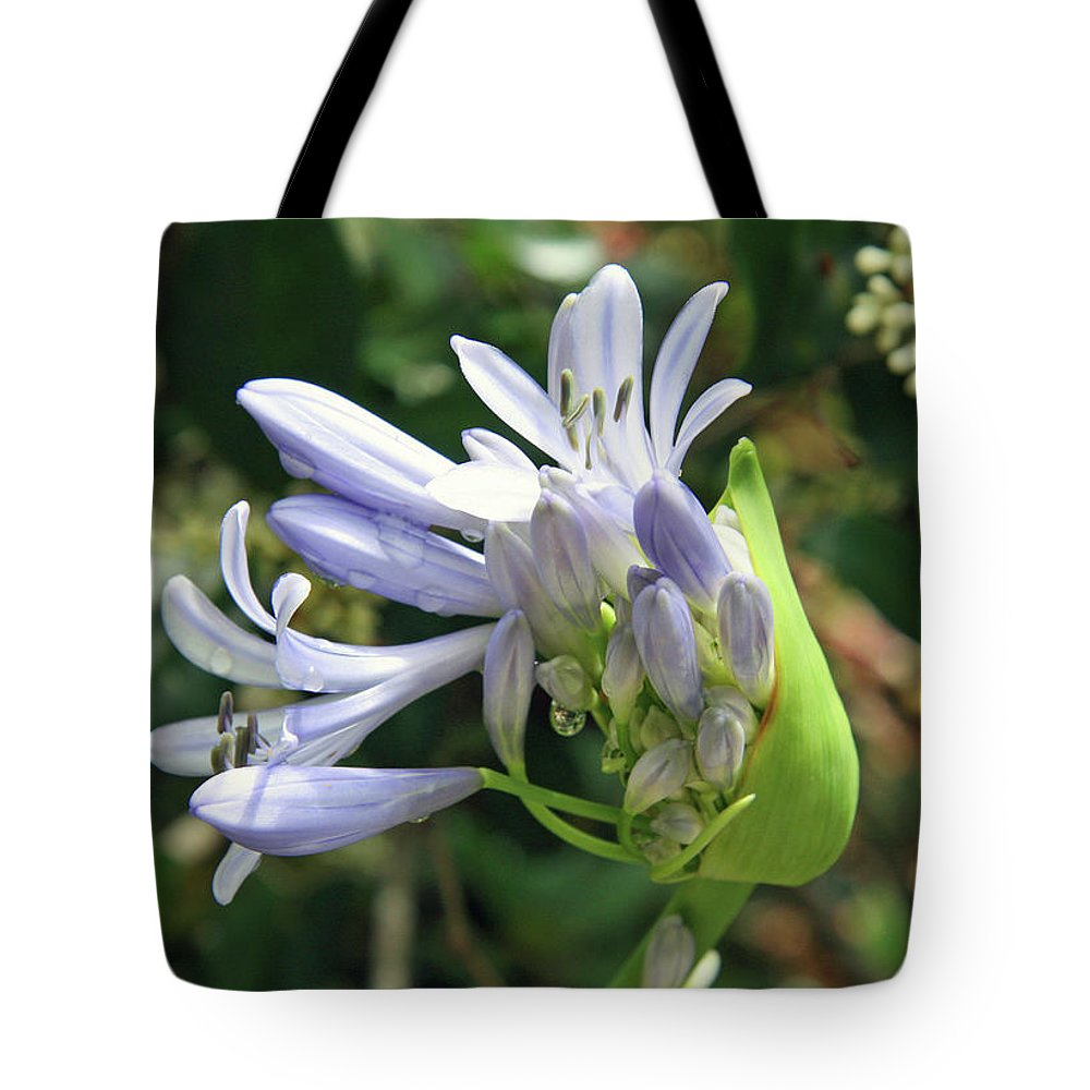 Flower Tote Bag featuring the photograph A Blooming Bud by Cora Wandel
