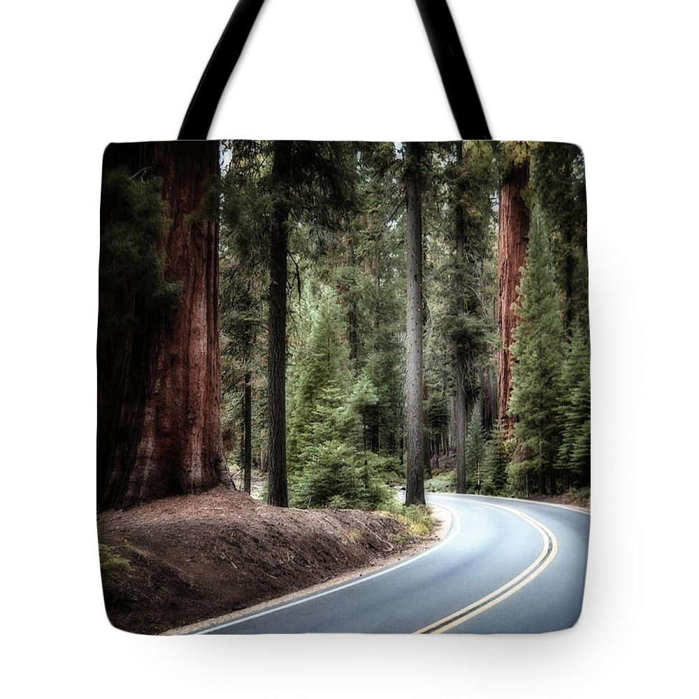 Sequoia Tote Bag featuring the photograph A Bright Future Around The Bend by Andrea Platt
