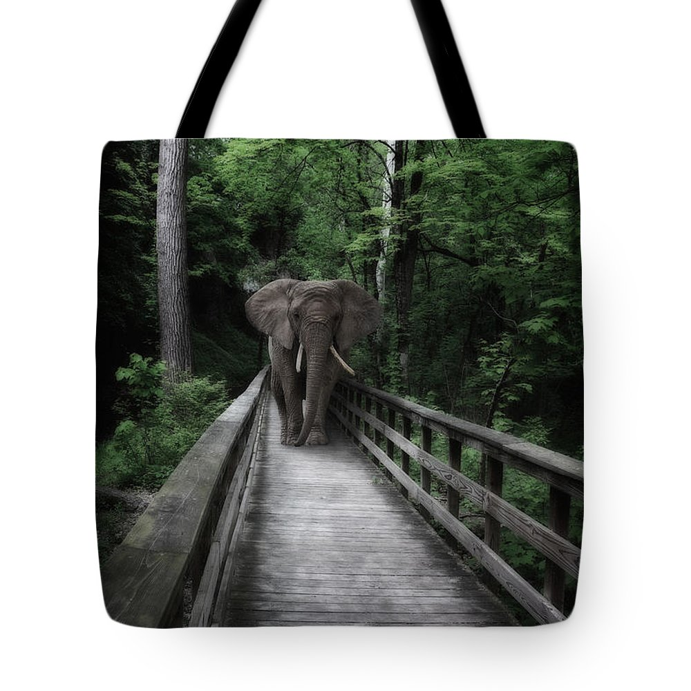 African Tote Bag featuring the photograph A Bull On The Boardwalk by Tom Mc Nemar