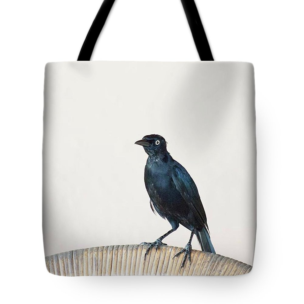 Caribgrackle Tote Bag featuring the photograph A Carib Grackle (quiscalus Lugubris) On by John Edwards
