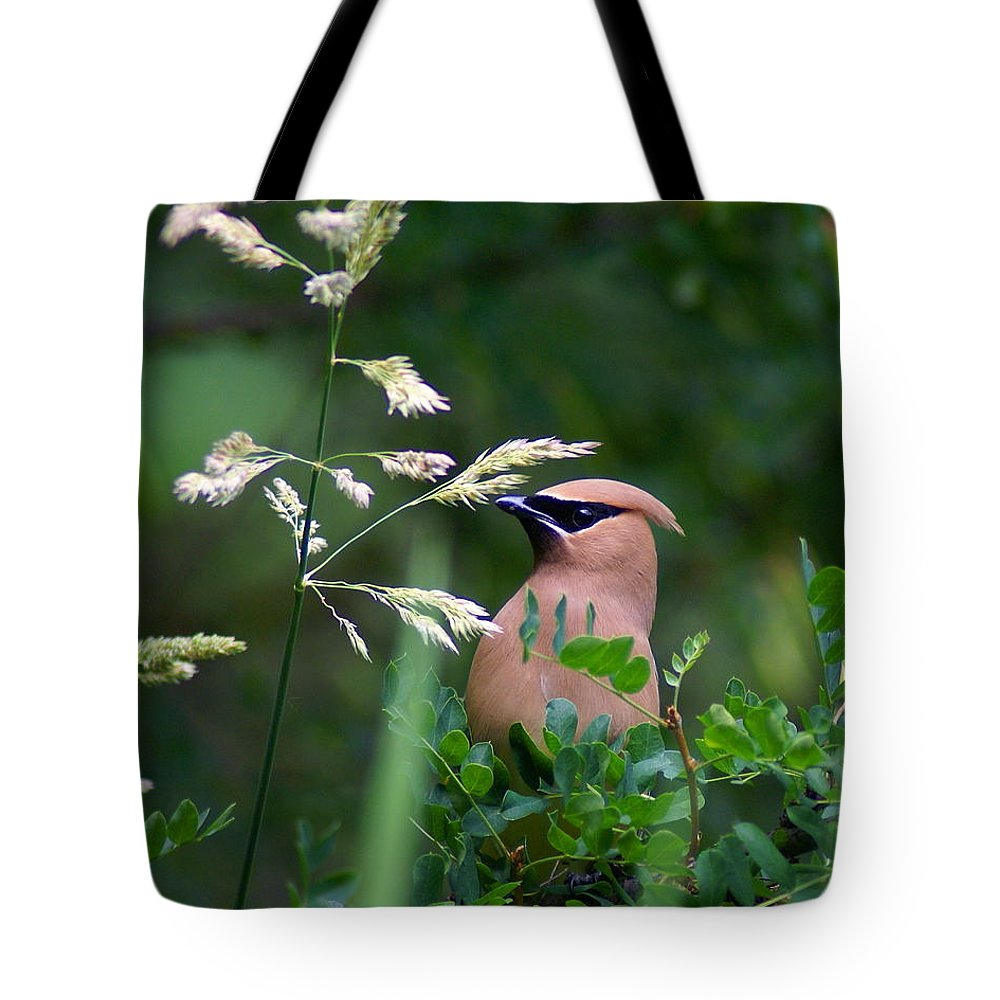 Birds Tote Bag featuring the photograph A Cedar Waxwing Facing Left by Ben Upham III