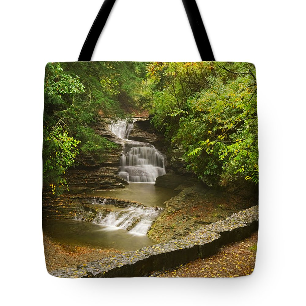 Fall Tote Bag featuring the photograph A Change of Seasons by Amanda Jones