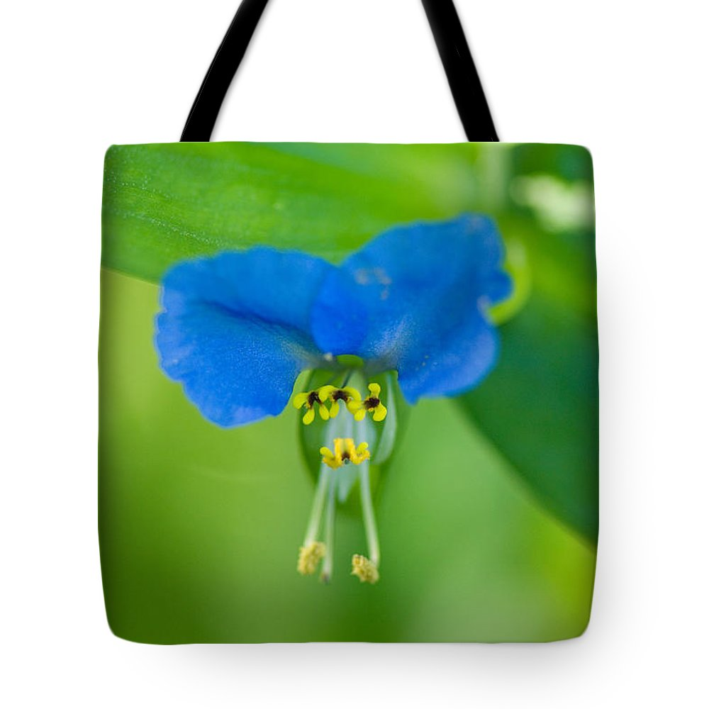 Photography Tote Bag featuring the photograph A Close-up Of A Bright Blue Flower by Joel Sartore