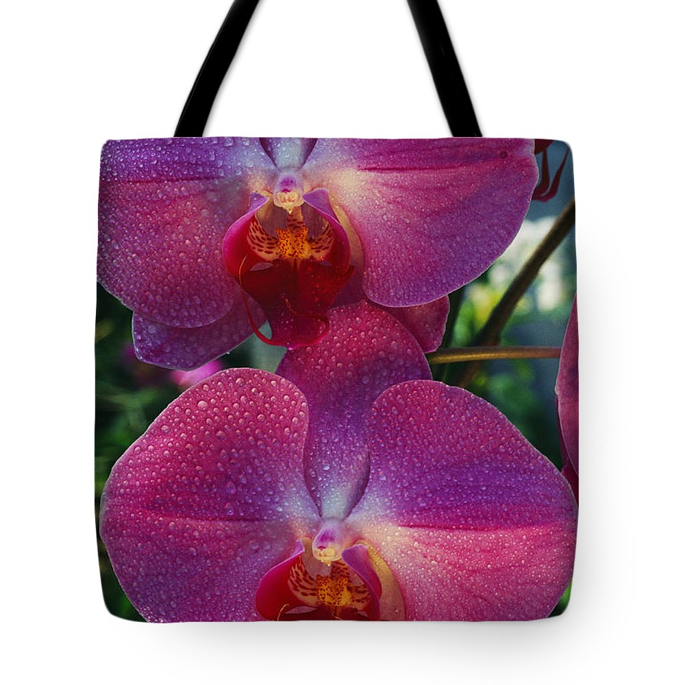 North America Tote Bag featuring the photograph A Close View Of An Exquisite by Jonathan Blair