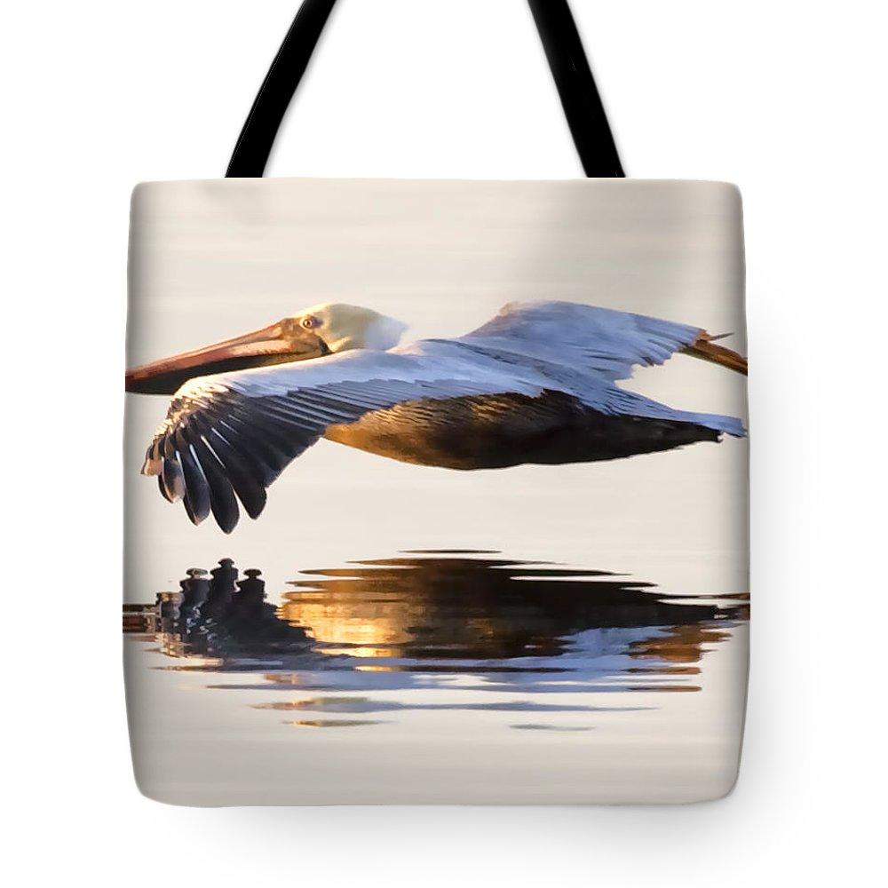 Brown Pelican Tote Bags