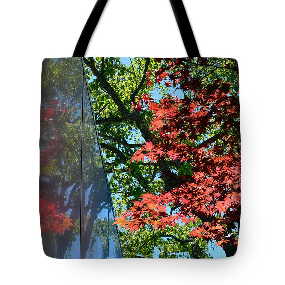 Trees Tote Bag featuring the photograph A Day Of Reflection by Donna Blackhall