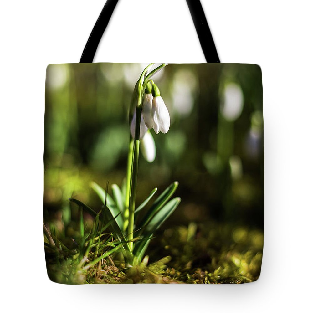 Nature Tote Bag featuring the photograph A Drop Of Spring by Silviu Dascalu