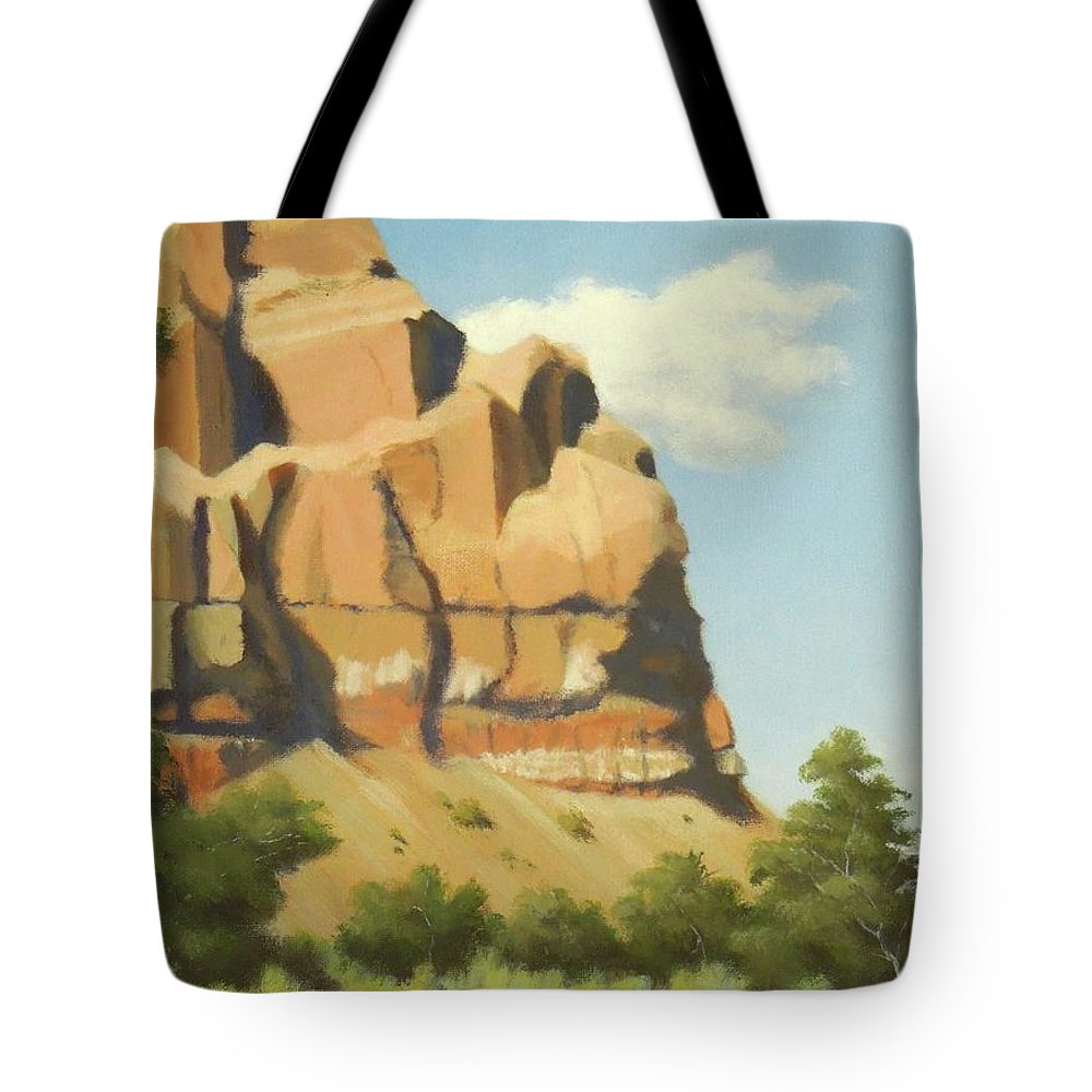New Mexico Tote Bag featuring the painting A Face In New Mexico by Phyllis Andrews