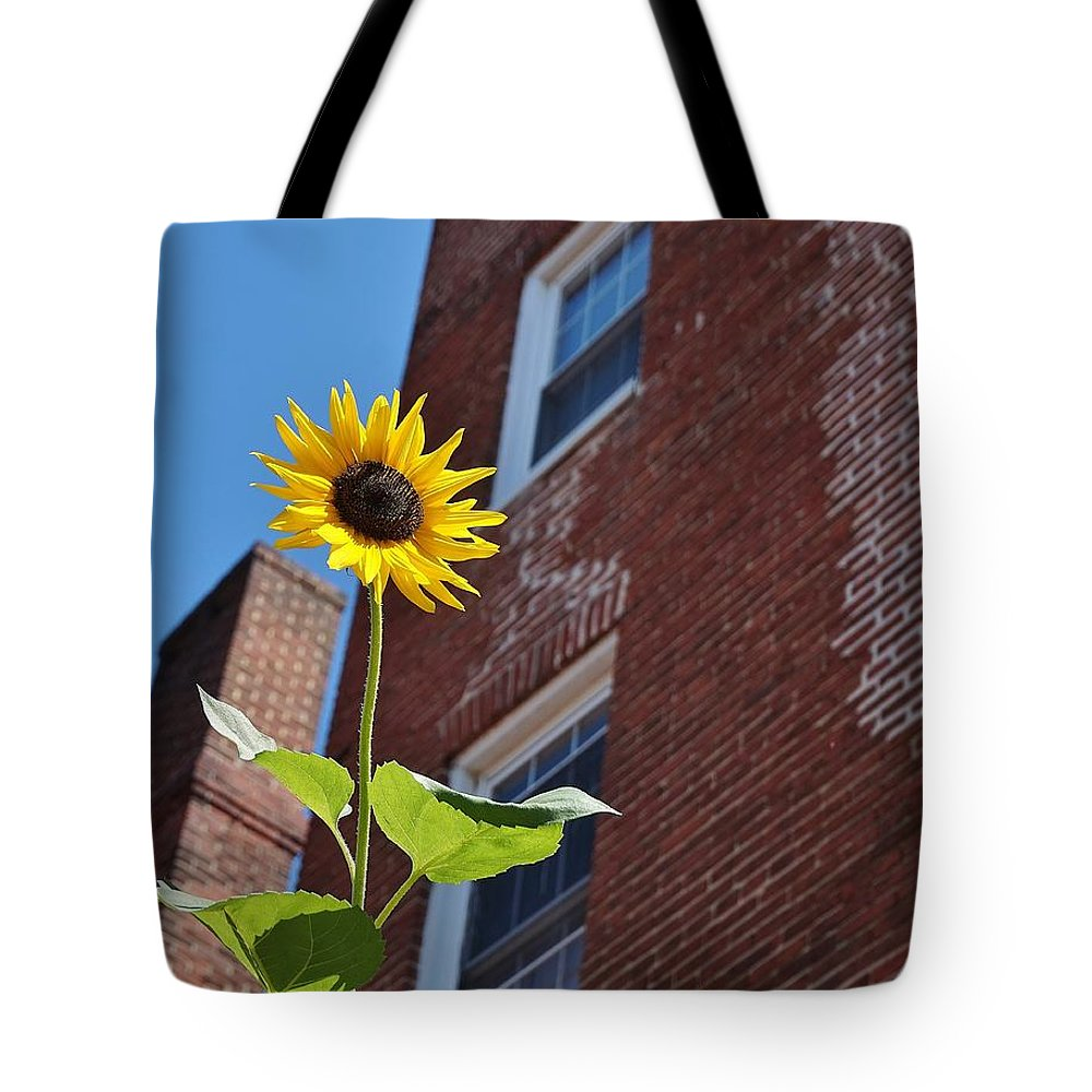 Sunflower Tote Bag featuring the photograph A Field Of Her Own by Beth Deitrick