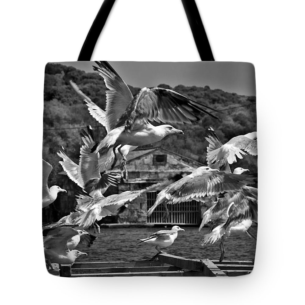 Outdoor Tote Bag featuring the photograph A Flock Of Seagulls Flying High To Summer Sky by Pedro Cardona Llambias