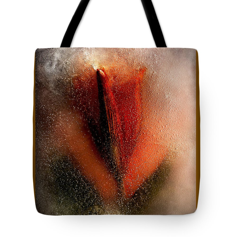 Flower Tote Bag featuring the photograph A Flower Is A Star by Carmen Moise