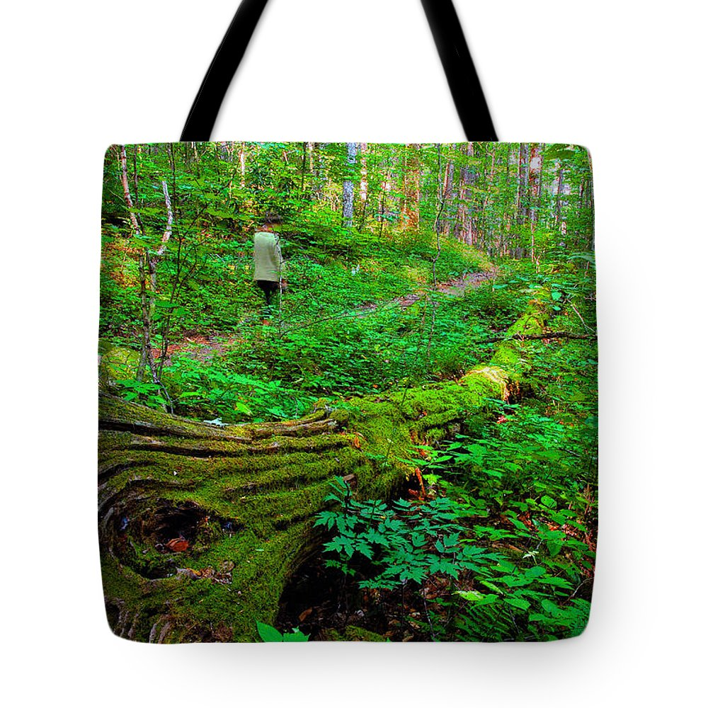 Hiking Tote Bag featuring the painting A Forest Stroll by David Lee Thompson