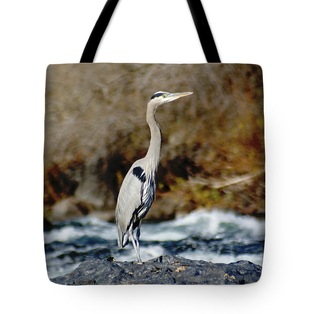 Birds Tote Bag featuring the photograph A Great Blue Heron At The Spokane River 2 by Ben Upham III