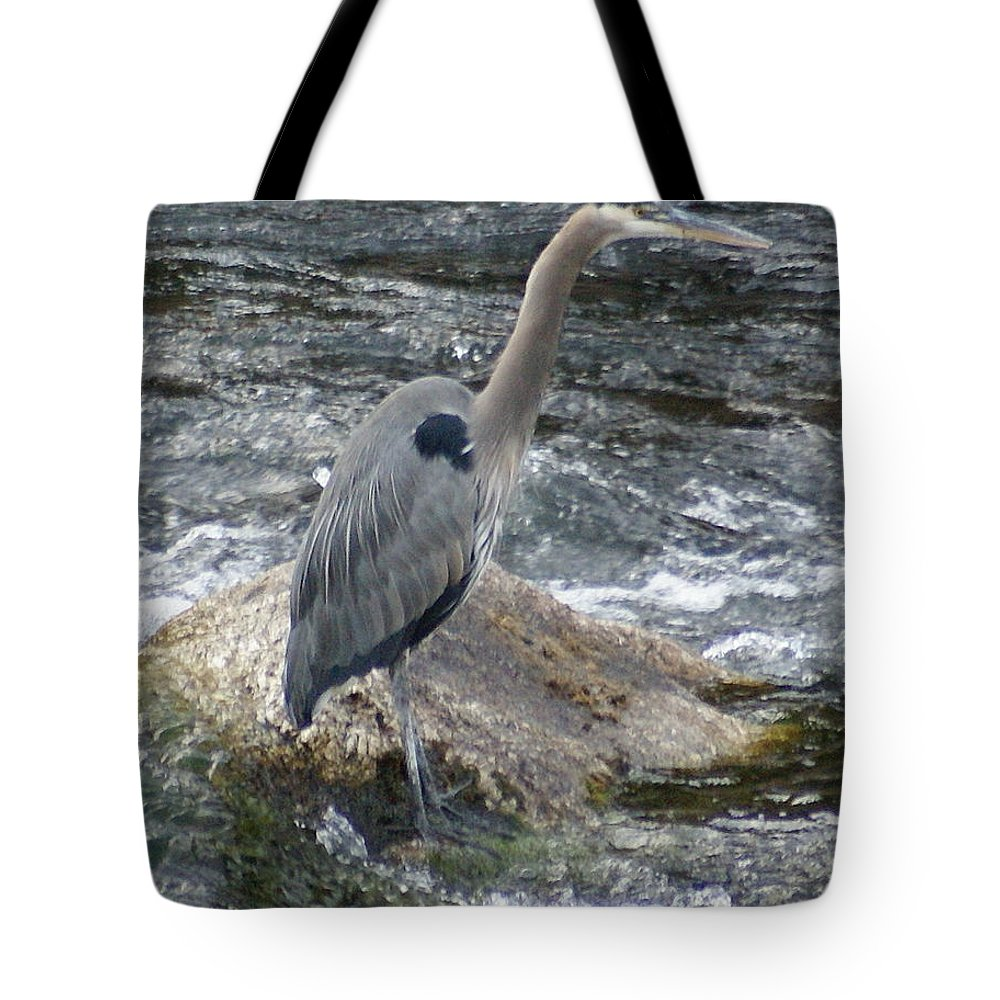 Birds Tote Bag featuring the photograph A Great Blue Heron At The Spokane River 3 by Ben Upham III