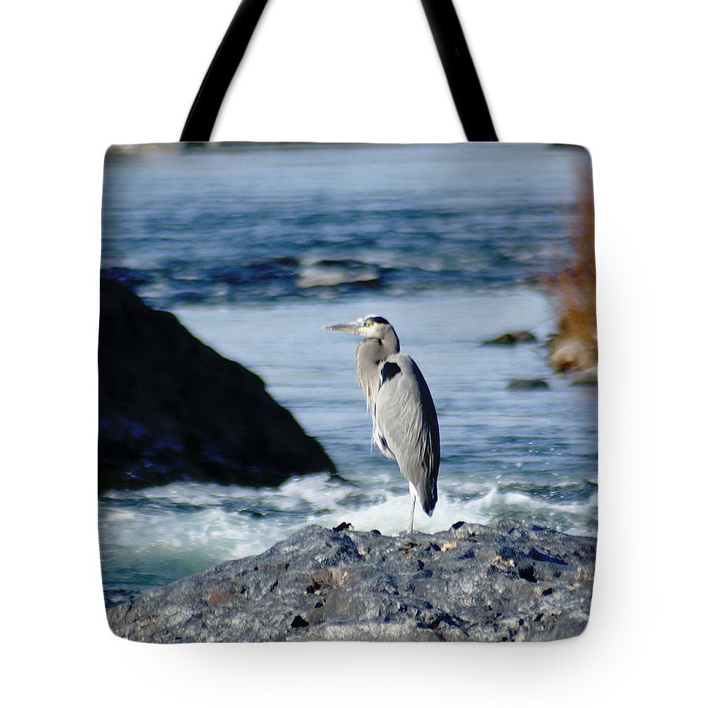 Birds Tote Bag featuring the photograph A Great Blue Heron At The Spokane River by Ben Upham III