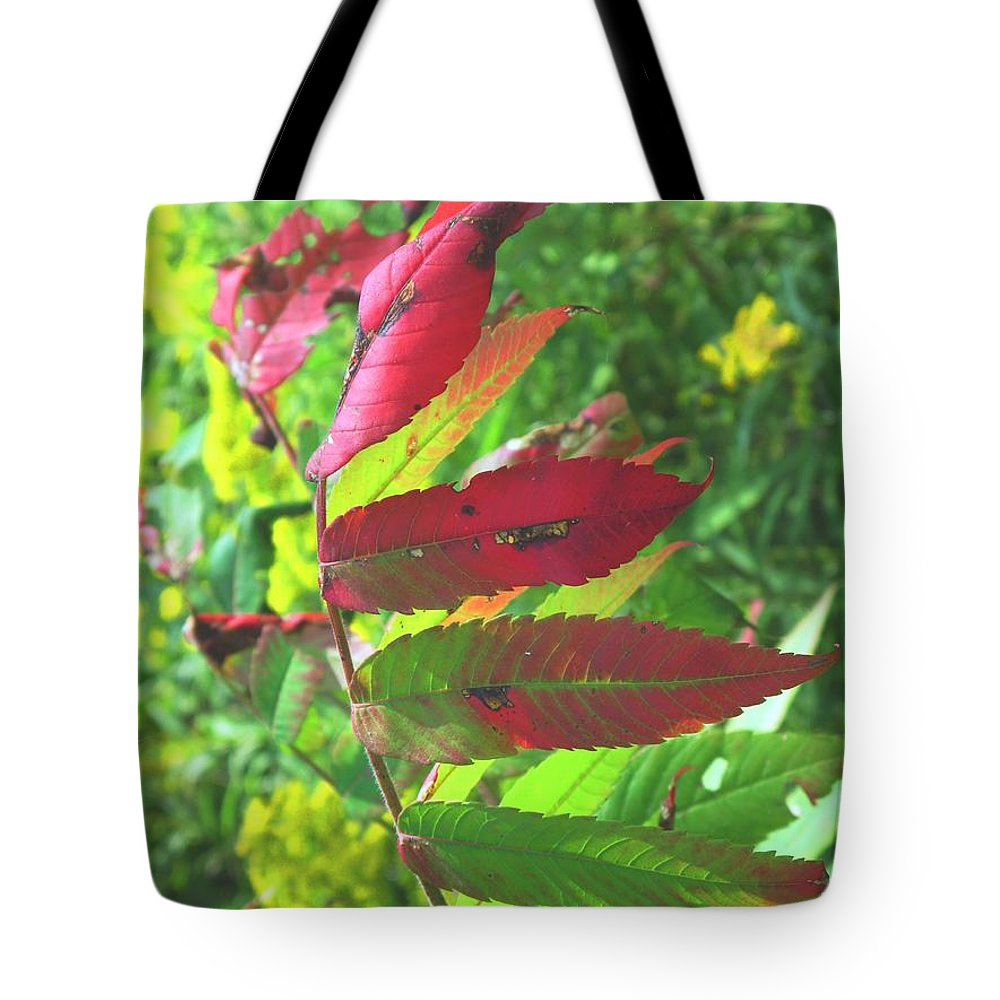 Leaves Tote Bag featuring the photograph A Hard Tough Summer by Ian MacDonald