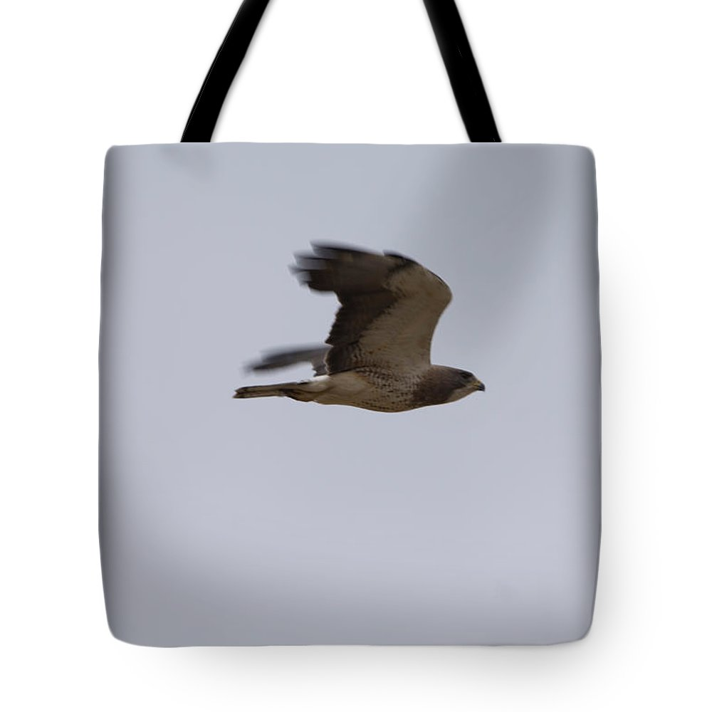 Photography Tote Bag featuring the photograph A Hawk Near The Charles M. Russell by Joel Sartore