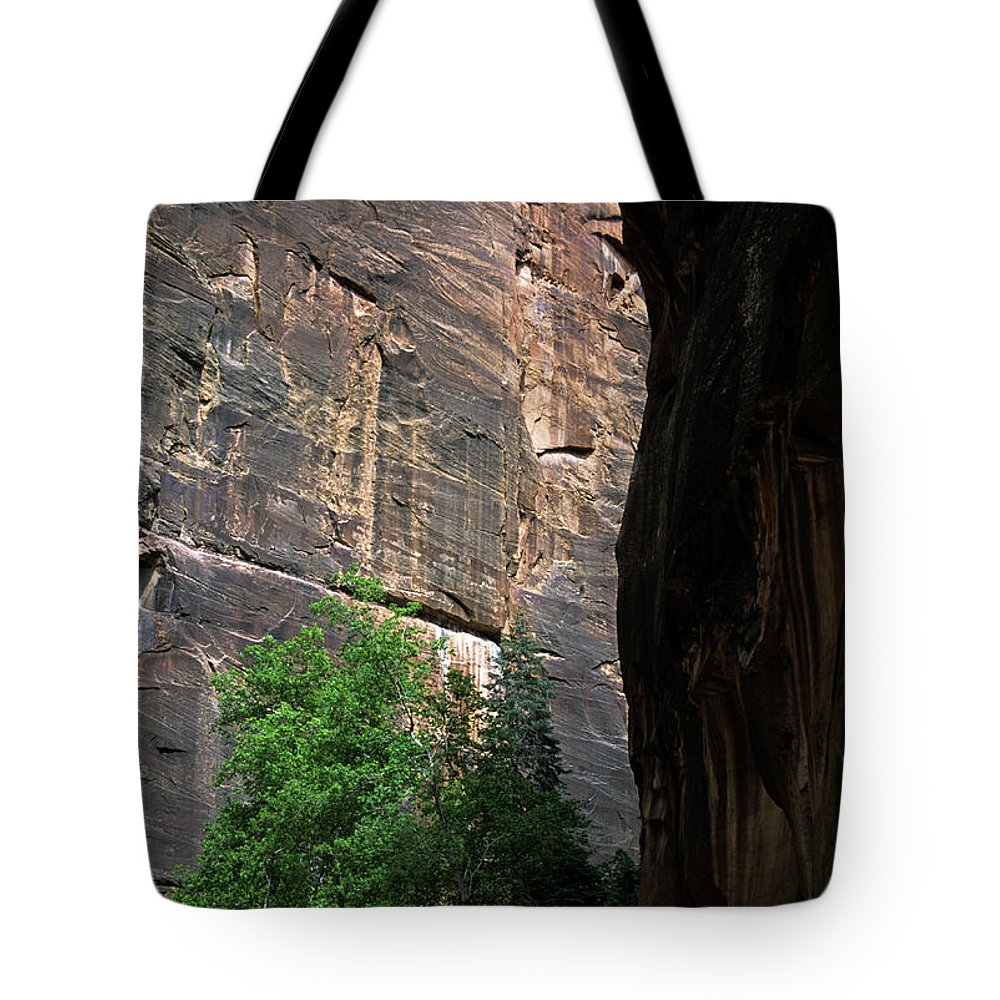 Zion National Park Tote Bag featuring the photograph A Hiker Walks Among The Narrow by Stacy Gold