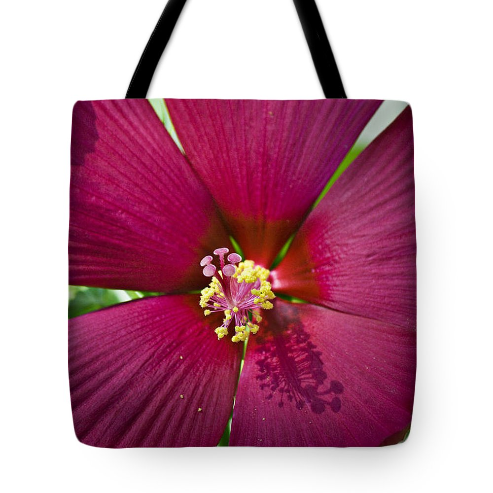 Hibiscus Tote Bag featuring the photograph A Hole In One by Teresa Mucha
