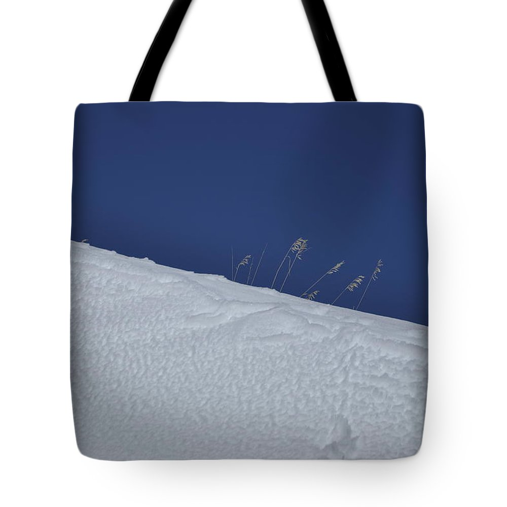Blue Tote Bag featuring the photograph A late winter visit to the Bighorn Mountains by Frank Madia