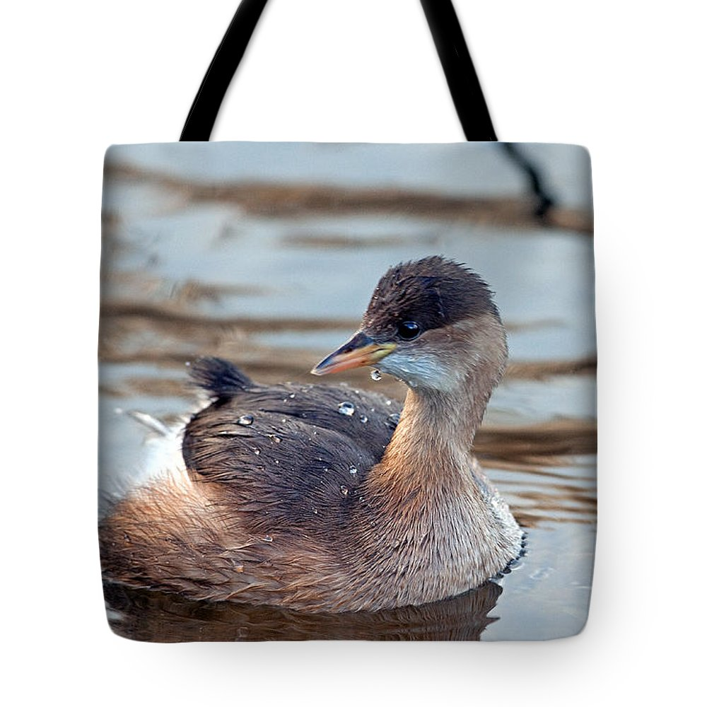 Little Grebe Tote Bag featuring the photograph A Little Grebe by Bob Kemp