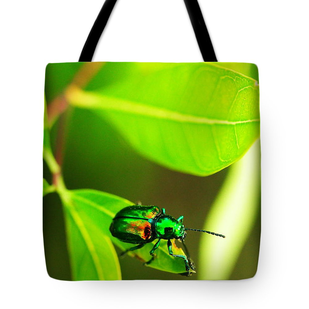 Beatle Tote Bag featuring the photograph A Little Red Beatle by Jeff Swan