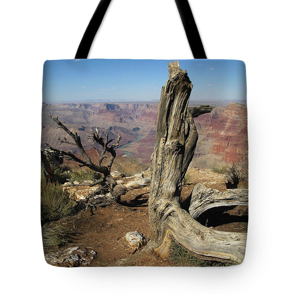 Grand Canyon Tote Bag featuring the photograph A Long Time Ago by Cathy Franklin