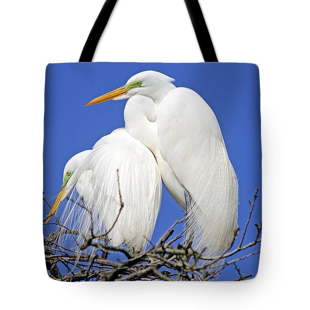 Wildlife Tote Bag featuring the photograph A Loving Couple by Kenneth Albin