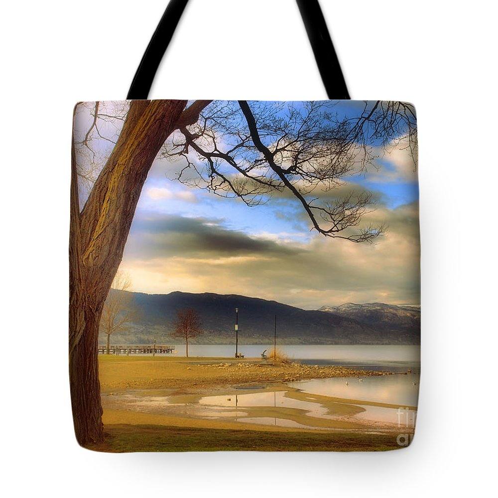 Okanagan Tote Bag featuring the photograph A March Morning by Tara Turner