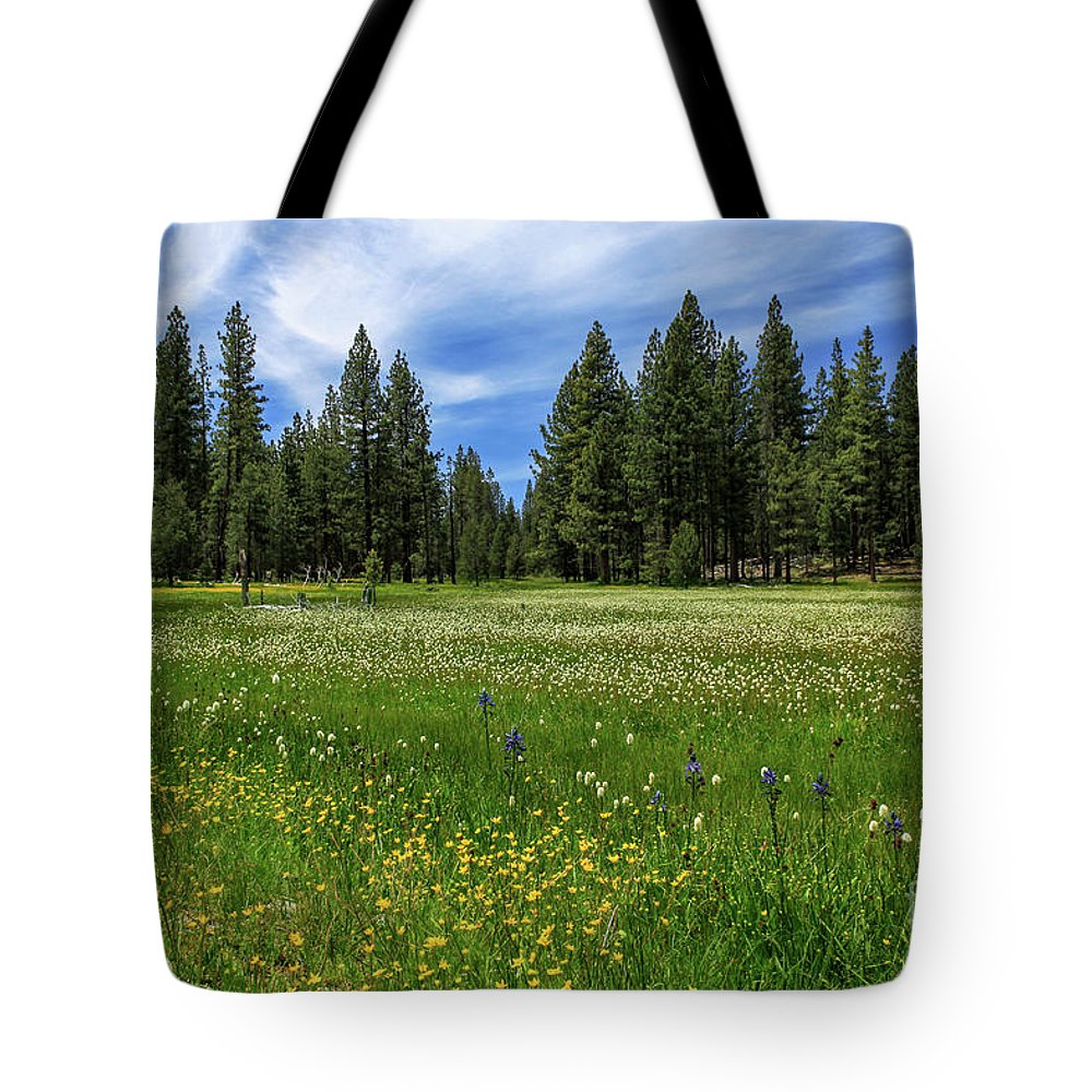 Landscape Tote Bag featuring the photograph A Meadow In Lassen County by James Eddy