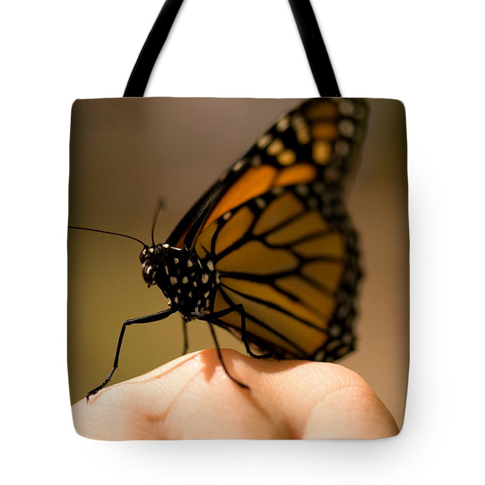 Photography Tote Bag featuring the photograph A Monarch Butterfly At The Butterfly by Joel Sartore