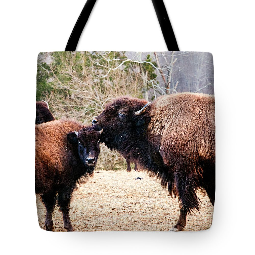 Nature Tote Bag featuring the photograph A Mother's Love by Broken Soldier