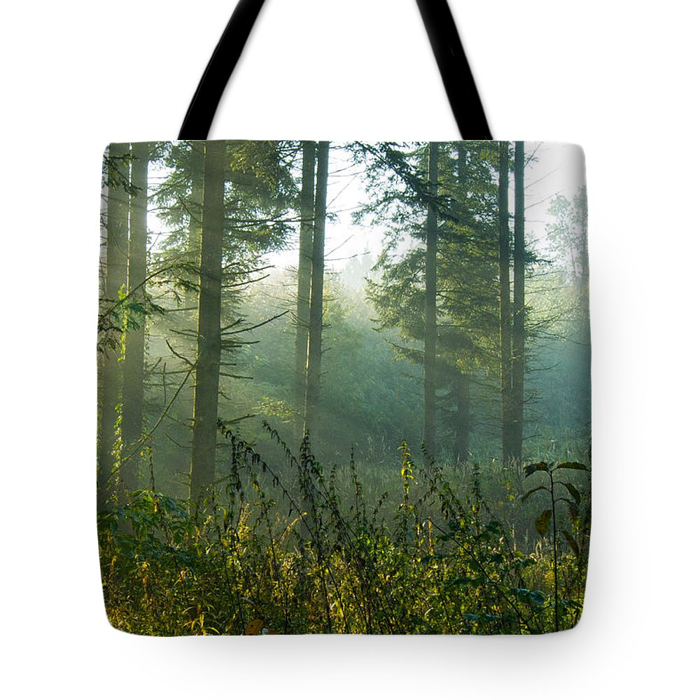 Nature Tote Bag featuring the photograph A New Day Has Come by Daniel Csoka