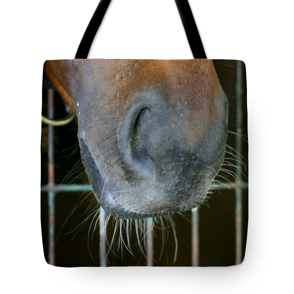 Nose Tote Bag featuring the photograph a Nose Knows by Cathy Harper