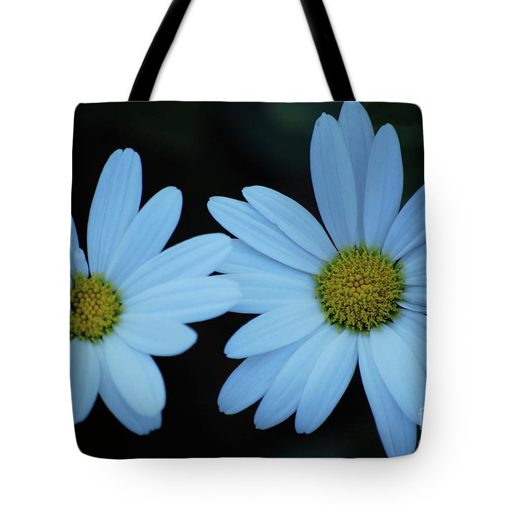 Daisy Tote Bag featuring the photograph A Pair Of Daisies by Lori Tambakis