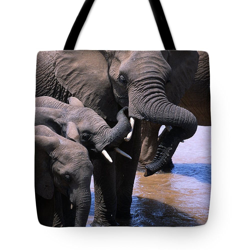 Africa Tote Bag featuring the photograph A Refreshing Moment by Sandra Bronstein