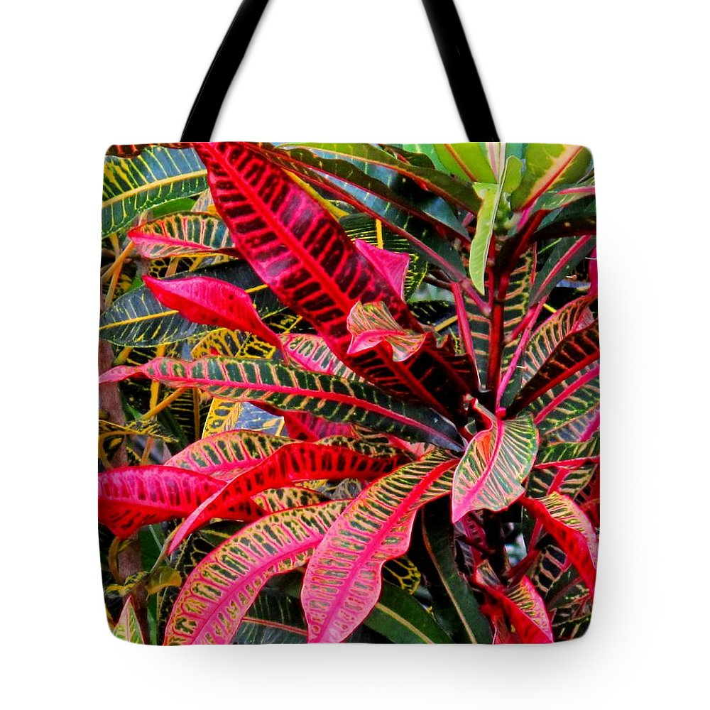 Red Tote Bag featuring the photograph A Rich Composition by Ian MacDonald